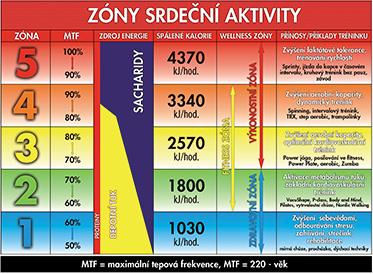 Zóny srdeční aktivity